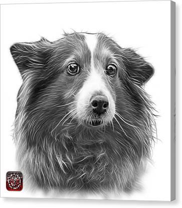 Greyscale Shetland Sheepdog Dog Art 9973 - Wb Canvas Print by James Ahn