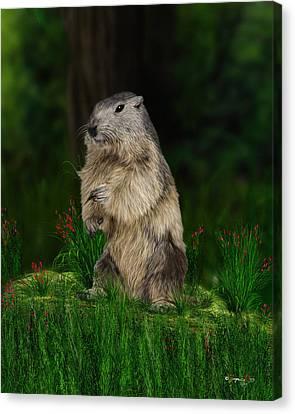 Groundhog Canvas Print by Jurgen Doelle