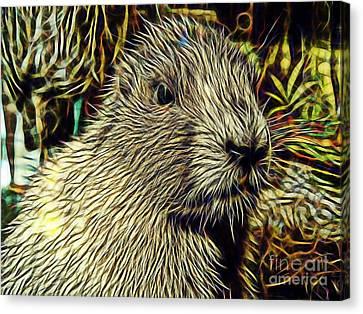 Groundhog Canvas Print by Marvin Blaine