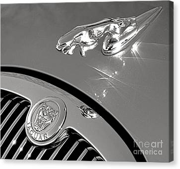 Growler And Leaper Canvas Print by Olivier Le Queinec
