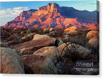 Guadalupe El Capitan Canvas Print by Inge Johnsson