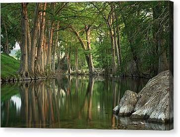 Guadalupe River Reflections Canvas Print by Paul Huchton