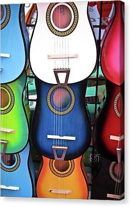 Guitar Garden Canvas Print by Tony Grider