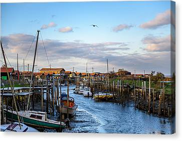 Canvas Print featuring the photograph Gujan Mestras I by Thierry Bouriat