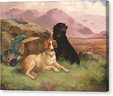 Gun Dogs Canvas Print by Robert Cleminson