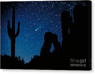 Halley's Comet Canvas Print by Frank Zullo