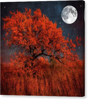 Halloween Color Canvas Print by Philippe Sainte-Laudy Photography