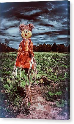 Halloween Scarecrow  Canvas Print by Debra Forand