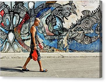 Hamel Street Canvas Print by Dawn Currie
