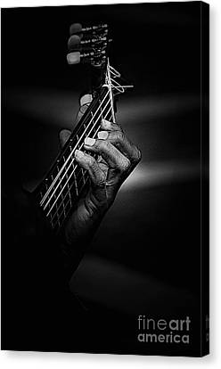 Hand Of A Guitarist In Monochrome Canvas Print by Avalon Fine Art Photography