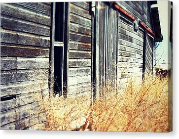 Hanging By A Thred Canvas Print by Julie Hamilton