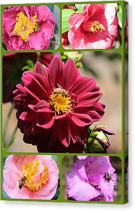 Happy Bees And Flowers Collage Canvas Print by Carol Groenen