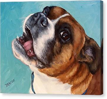 Happy Boxer Dog Canvas Print by Dottie Dracos