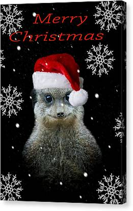 Happy Christmas Canvas Print by Paul Neville