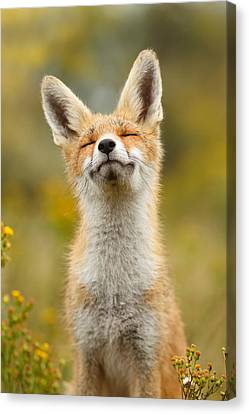Happy Fox Canvas Print by Roeselien Raimond