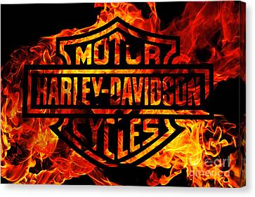 Harley Davidson Logo Flames Canvas Print by Randy Steele