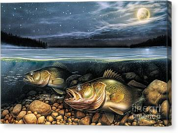Harvest Moon Walleye 1 Canvas Print by JQ Licensing