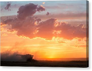 Harvest Sunset Canvas Print by Todd Klassy