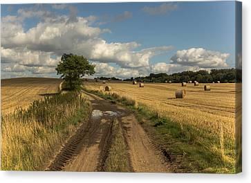 Harvest Time Canvas Print by Chris Fletcher