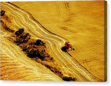 Harvesting The Crop Canvas Print by Mal Bray