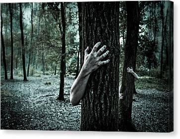 Haunted Forest  Canvas Print by Britten Adams