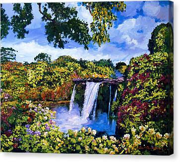 Hawaiian Paradise Falls Canvas Print by David Lloyd Glover