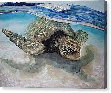Hawaiin Turtle Canvas Print by Lynne Haines