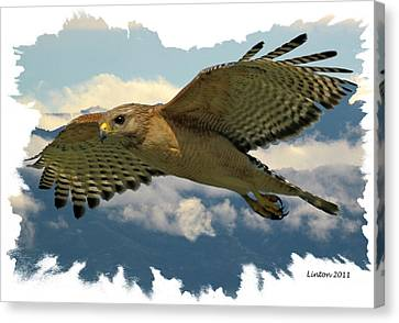 Hawk On The Wing Canvas Print by Larry Linton