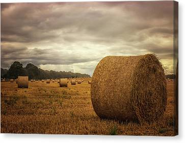 Hay Bales Canvas Print by Martin Newman