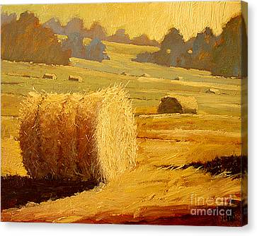 Hay Bales Of Bordeaux Canvas Print by Robert Lewis