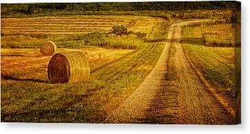 Hay Rolls - Country Road Canvas Print by Nikolyn McDonald