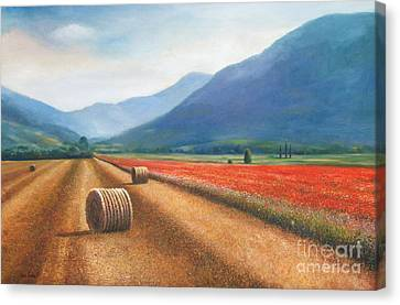 Haybales In Italy Canvas Print by Ann  Cockerill