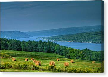 Hayfield And Lake I  Canvas Print by Steven Ainsworth