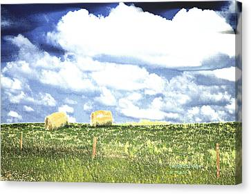 Hayfield Canvas Print by Lenore Senior and Tracy F
