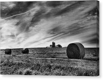 Hayrolls And Field Canvas Print by Steven Ainsworth