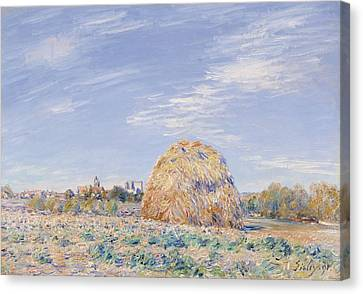 Haystack On The Banks Of The Loing Canvas Print by Alfred Sisley