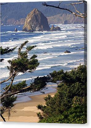 Haystak Rock Through The Trees Canvas Print by Marty Koch