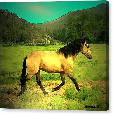 He Paweth In The Valley And Rejoiceth In His Strength  Canvas Print by Anastasia Savage Ealy