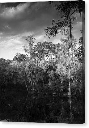 Head Waters Canvas Print by Marvin Spates