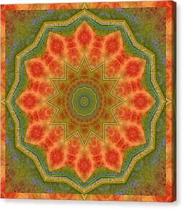 Healing Mandala 14 Canvas Print by Bell And Todd
