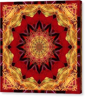 Healing Mandala 28 Canvas Print by Bell And Todd