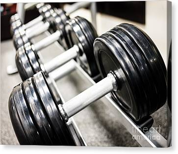 Healthclub Free Weights On A Rack Canvas Print by Paul Velgos