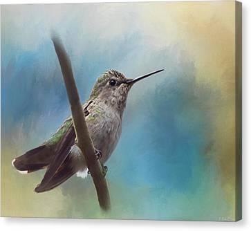 Hear Her Song - Hummingbird Art Canvas Print by Jordan Blackstone