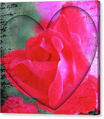 Heart And Rose Canvas Print by Cathie Tyler