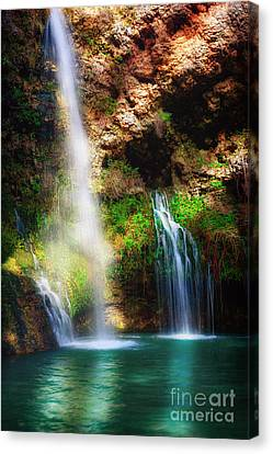 Heavenly Light At Dripping Springs II Canvas Print by Tamyra Ayles
