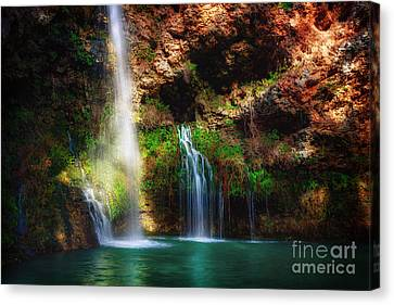 Heavenly Light At Dripping Springs Canvas Print by Tamyra Ayles