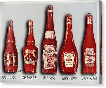 Heinz Tomato Ketchup Vintage, Evolution To 1910 Canvas Print by Tony Rubino