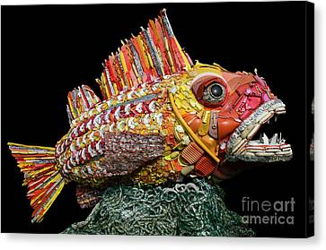 Henry The Fish Canvas Print by Bob Christopher