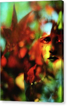 Her Autumn Eyes Canvas Print by Rebecca Sherman
