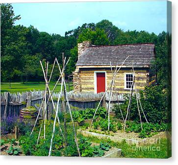 Herb And Vegetable Garden Canvas Print by Penny Neimiller